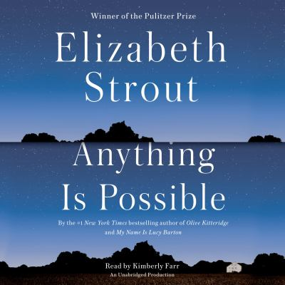 Cover image for Anything Is Possible : a novel