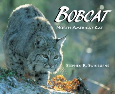 Cover image for Bobcat : North America's cat