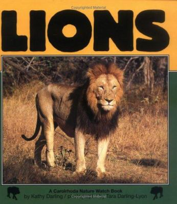 Cover image for Lions