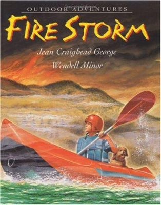 Cover image for Fire storm