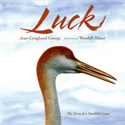 Cover image for Luck