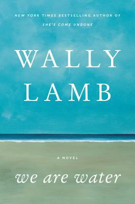 Cover image for We are water : a novel