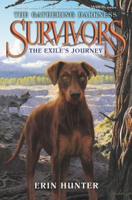 Cover image for The exile's journey
