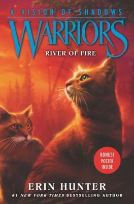 Cover image for River of fire