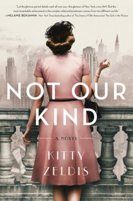Cover image for Not our kind : a novel