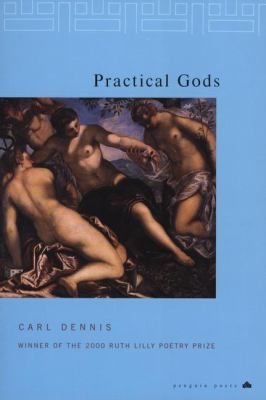 Cover image for Practical gods