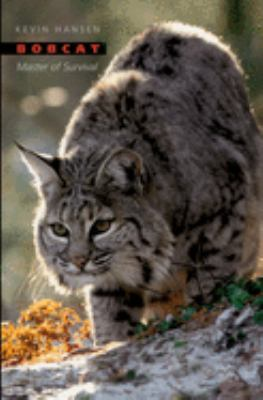 Cover image for Bobcat : master of survival