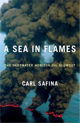 Cover image for A sea in flames : the Deepwater Horizon oil blowout