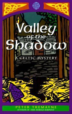Cover image for Valley of the shadow : a Celtic mystery