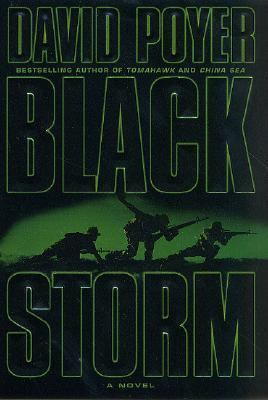 Cover image for Black storm