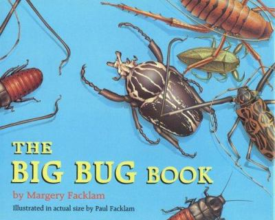 Cover image for The big bug book