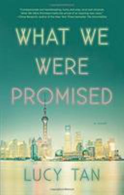 Cover image for What we were promised