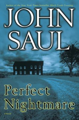 Cover image for Perfect nightmare : a novel