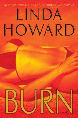 Cover image for Burn : a novel