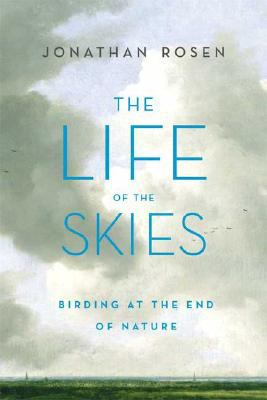 Cover image for The life of the skies