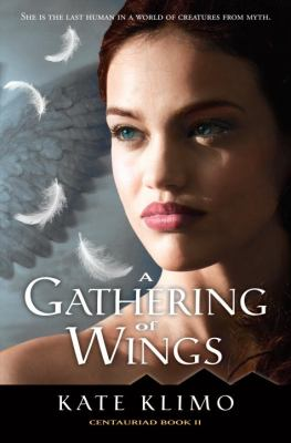 Cover image for A gathering of wings