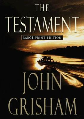 Cover image for The testament