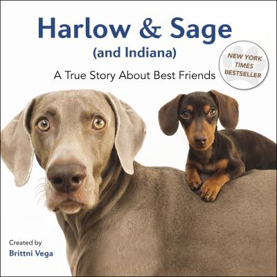 Cover image for Harlow & Sage (and Indiana) : a true story about best friends