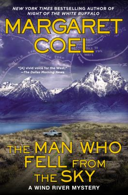Cover image for The man who fell from the sky
