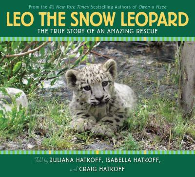 Cover image for Leo, the snow leopard : the true story of an amazing rescue