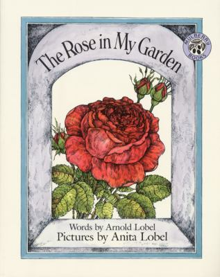 Cover image for The rose in my garden