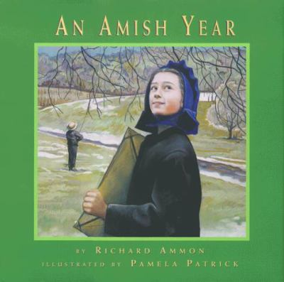 Cover image for An Amish year
