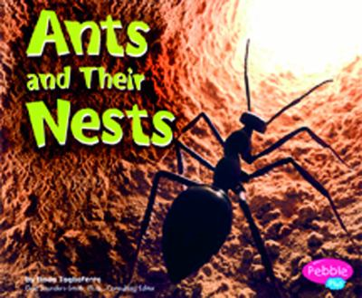 Cover image for Ants and their nests