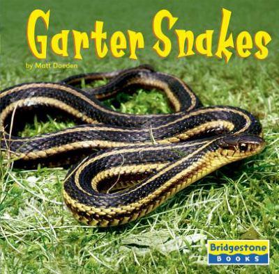 Cover image for Garter snakes
