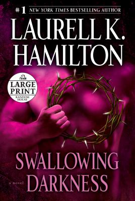 Cover image for Swallowing darkness : a novel