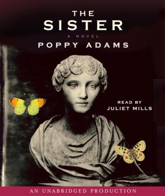 Cover image for The sister [a novel]