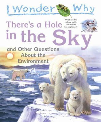 Cover image for I wonder why there's a hole in the sky and other questions about the environment