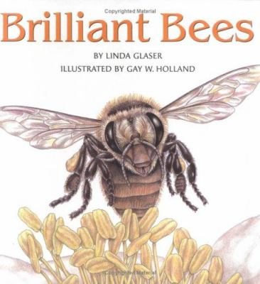 Cover image for Brilliant bees