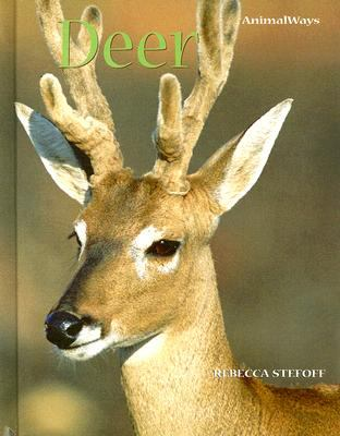 Cover image for Deer