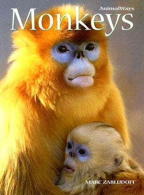 Cover image for Monkeys