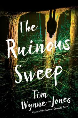 Cover image for The ruinous sweep