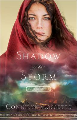 Cover image for Shadow of the storm