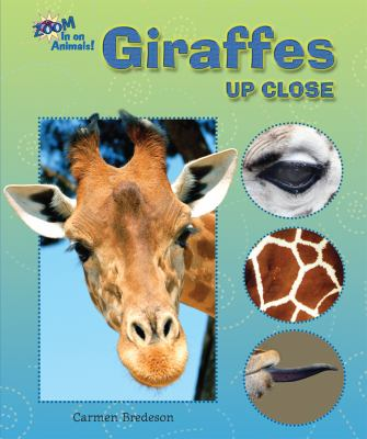 Cover image for Giraffes up close