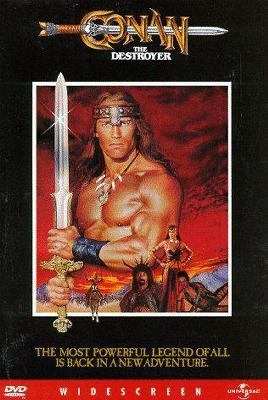 Cover image for Conan the destroyer