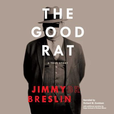 Cover image for The good rat a true story