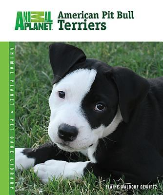 Cover image for American pit bull terriers