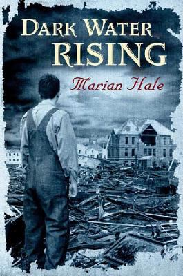 Cover image for Dark water rising