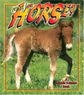 Cover image for What is a horse?