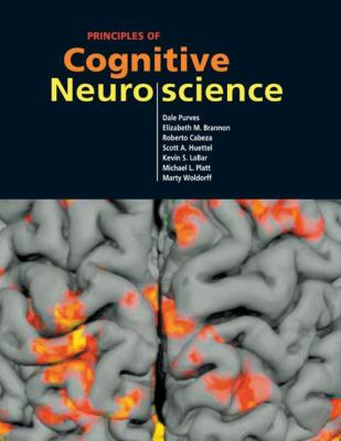 Cover image for Principles of cognitive neuroscience