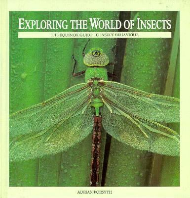 Cover image for Exploring the world of insects : the equinox guide to insect behaviour