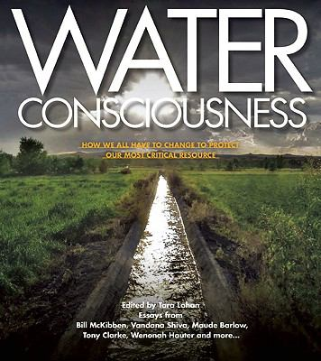Cover image for Water consciousness : how we all have to change to protect our most critical resource