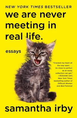 Cover image for We are never meeting in real life : essays