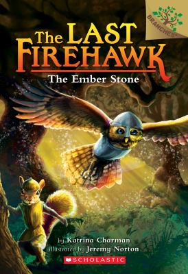 Cover image for The ember stone