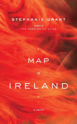 Cover image for Map of Ireland : a novel