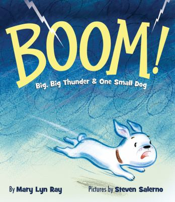 Cover image for Boom! : [big, big thunder & one small dog]