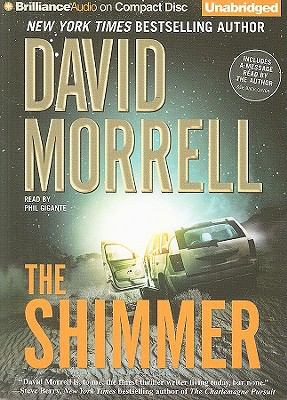 Cover image for The shimmer